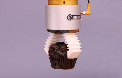 Muffin Packaging